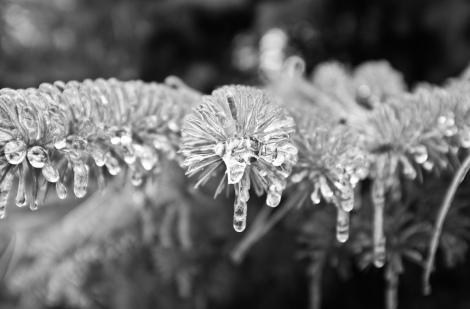 Image reproduced from Torontoist Flickr Pool user Howard Yang